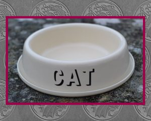 Authentically Welsh Cat Bowl