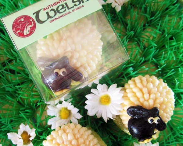 Authentically Welsh Chocolate Ewe